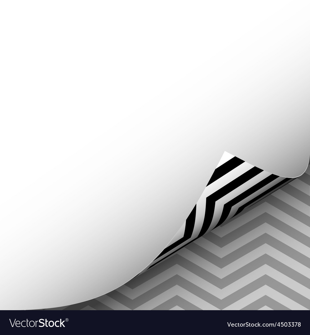 Blank paper sheet page curl with herringbone wave vector | Price: 1 Credit (USD $1)