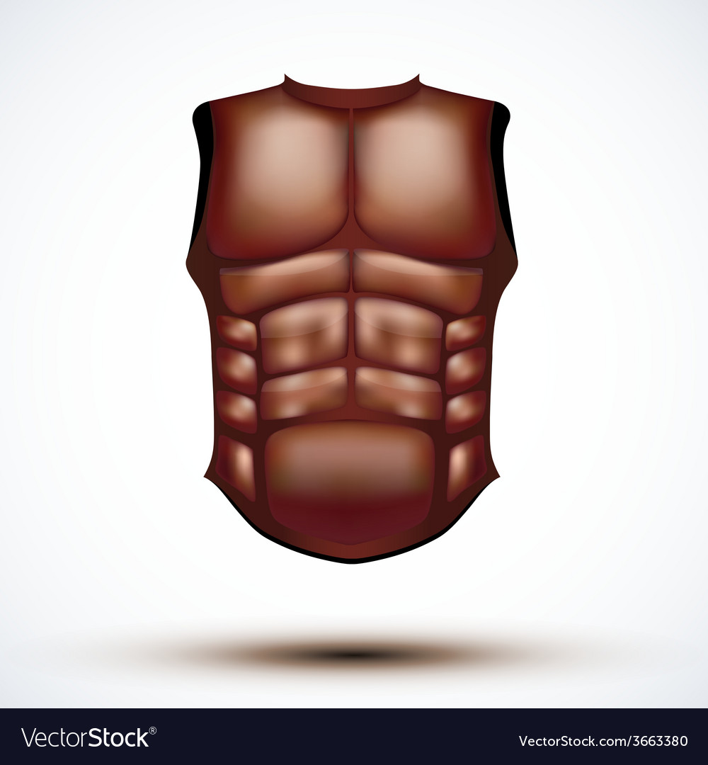 Brown leather ancient gladiator body armor vector | Price: 1 Credit (USD $1)