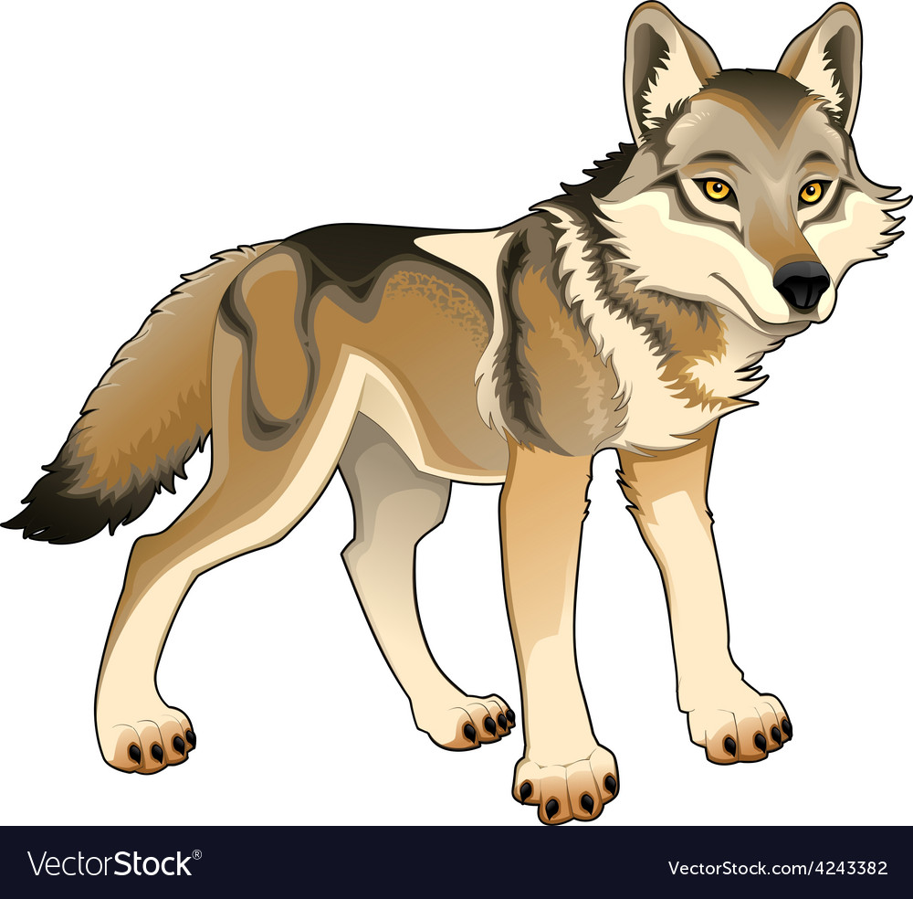 Wolf isolated character vector | Price: 1 Credit (USD $1)