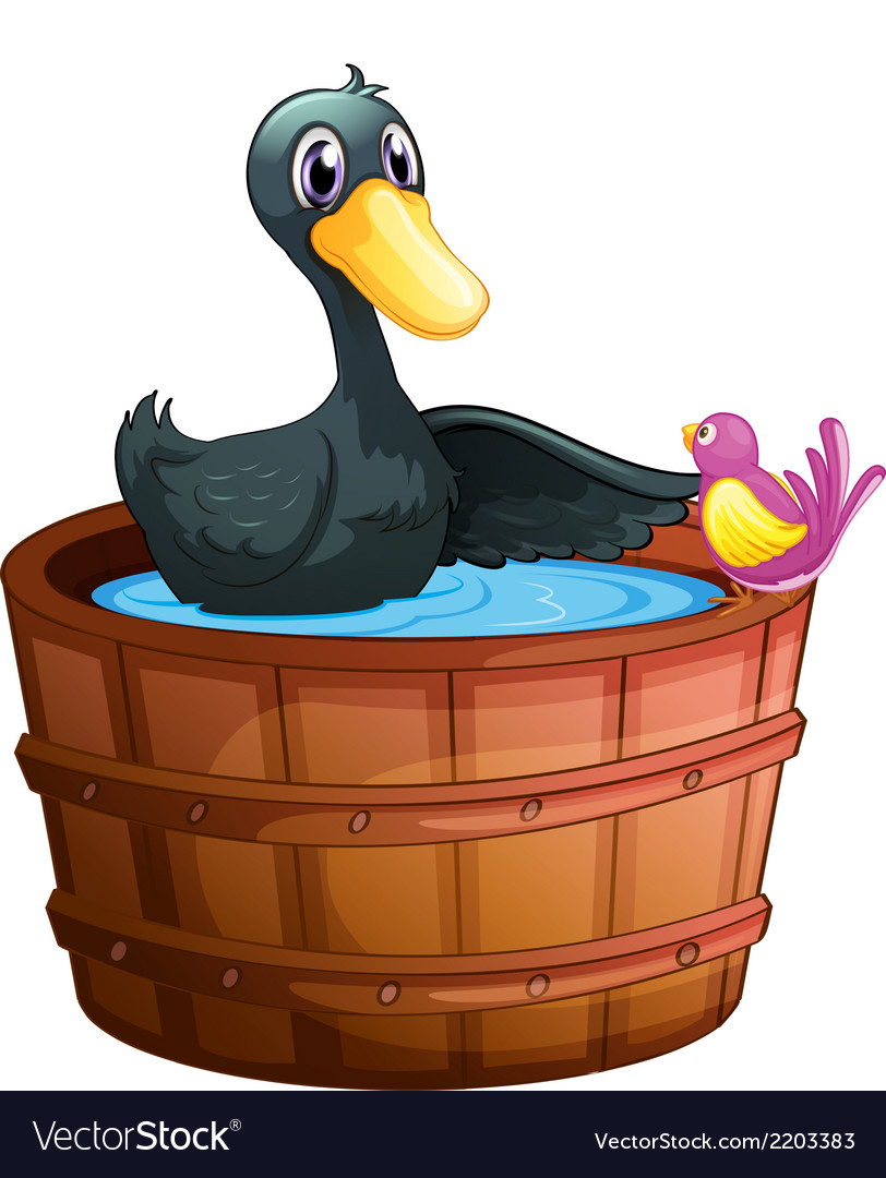 A bird watching the duck above the pail vector | Price: 1 Credit (USD $1)