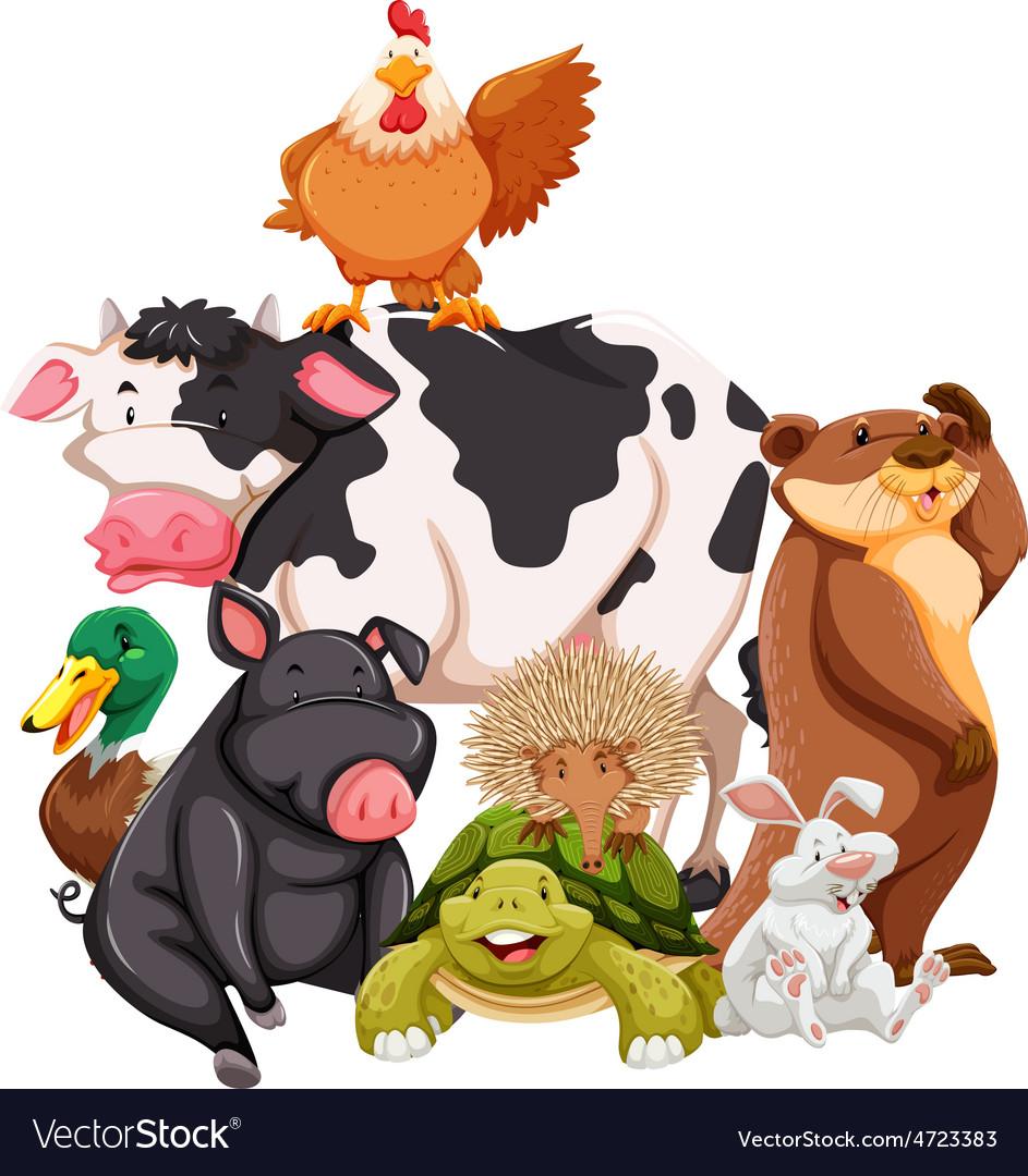 Animals vector   Price: 3 Credit (USD $3)