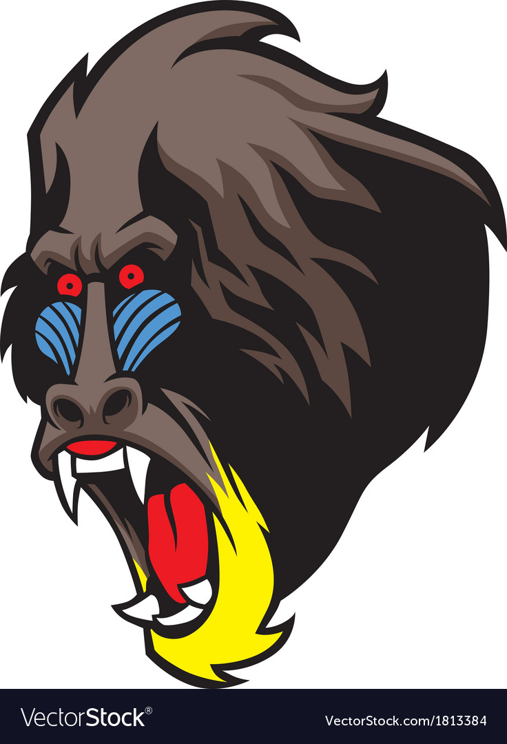 Angry baboon head vector | Price: 1 Credit (USD $1)