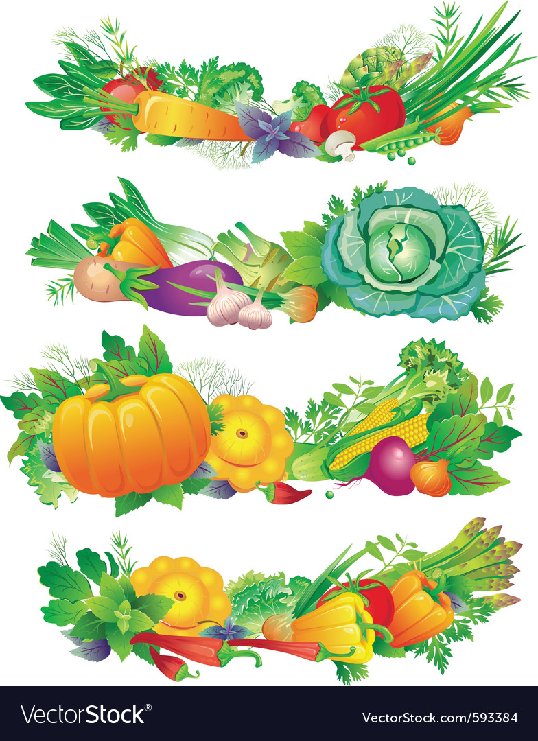 Banners with vegetables vector | Price: 3 Credit (USD $3)