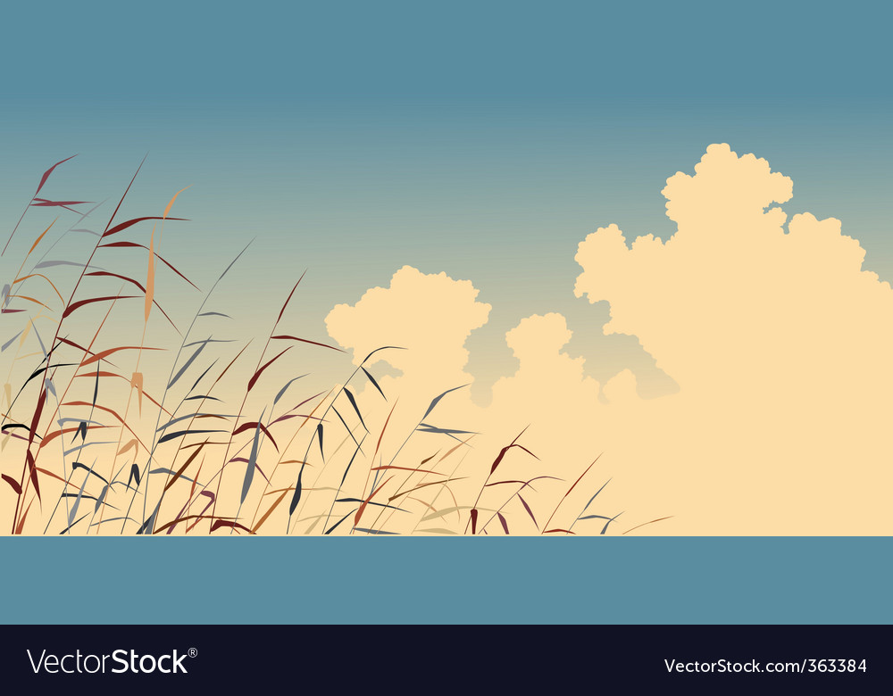 Reed sky vector | Price: 1 Credit (USD $1)