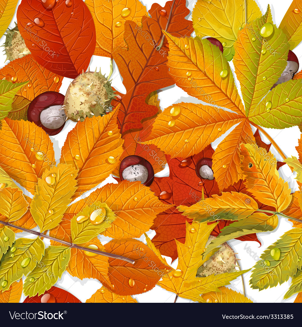 Seamless pattern from autumn leaves and chestnut vector | Price: 3 Credit (USD $3)