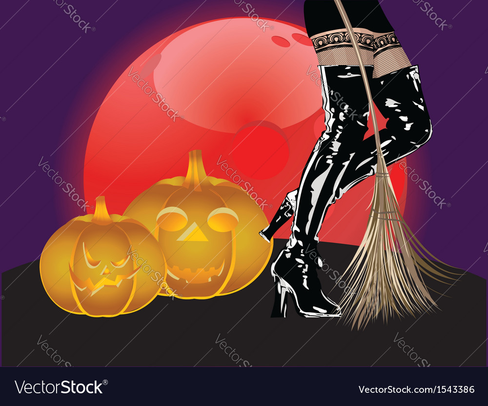 Legs in high boots and broom vector   Price: 1 Credit (USD $1)