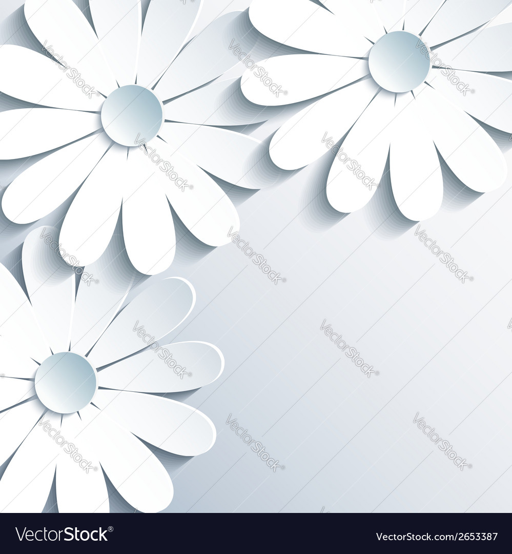 Stylish grey wallpaper with 3d white chamomile vector | Price: 1 Credit (USD $1)