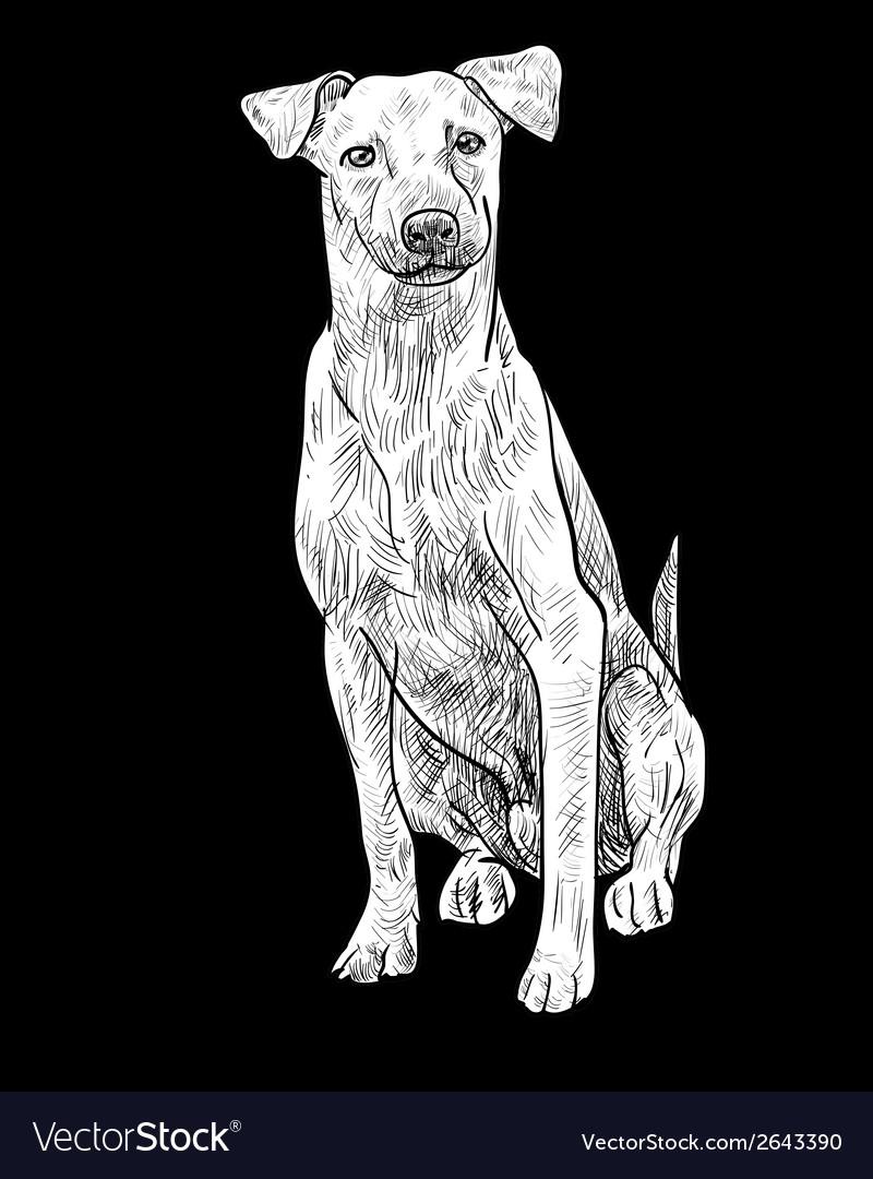 Sitting brown dog vector   Price: 1 Credit (USD $1)