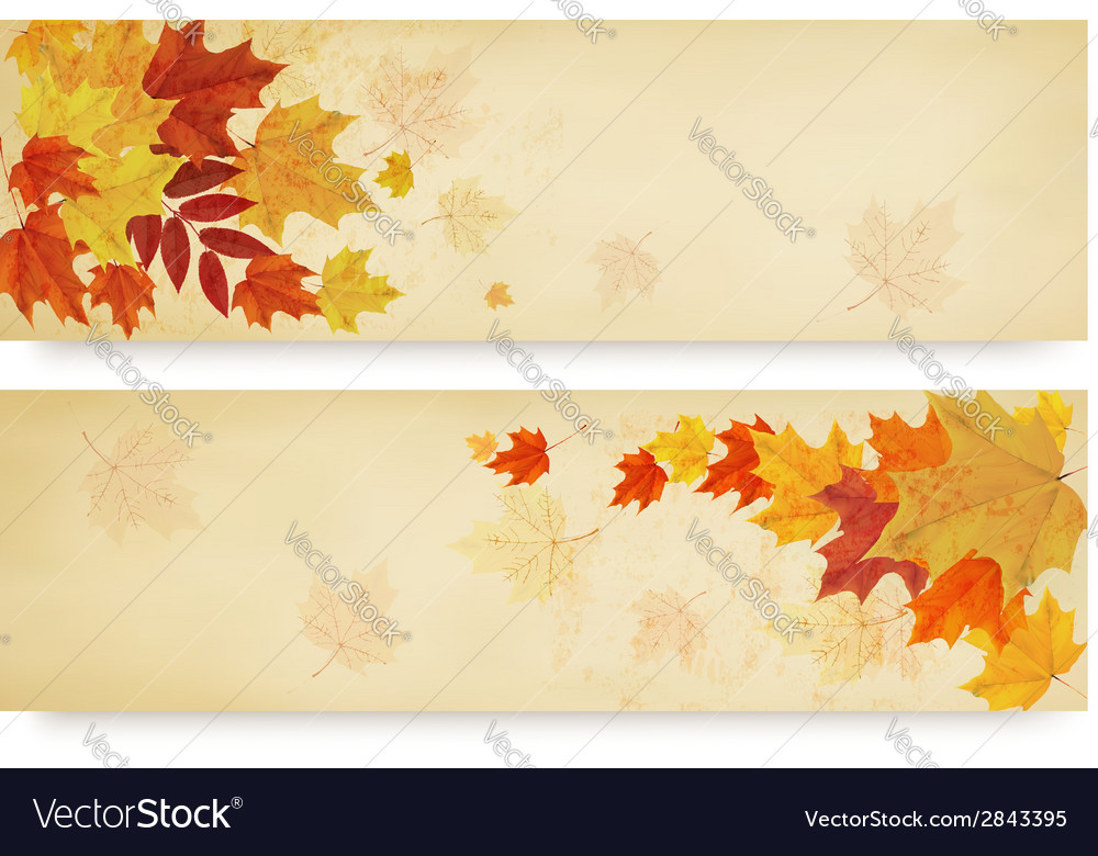 Two abstract autumn banners with colorful autumn vector | Price: 1 Credit (USD $1)