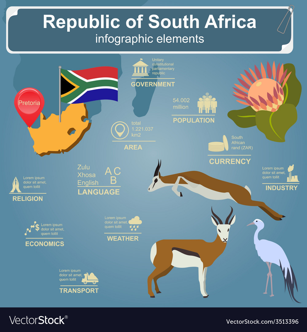 South africa infographics statistical data sights vector | Price: 1 Credit (USD $1)