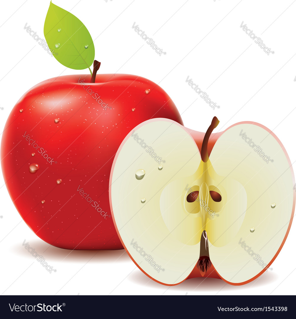 Red apple and half of apple vector | Price: 1 Credit (USD $1)