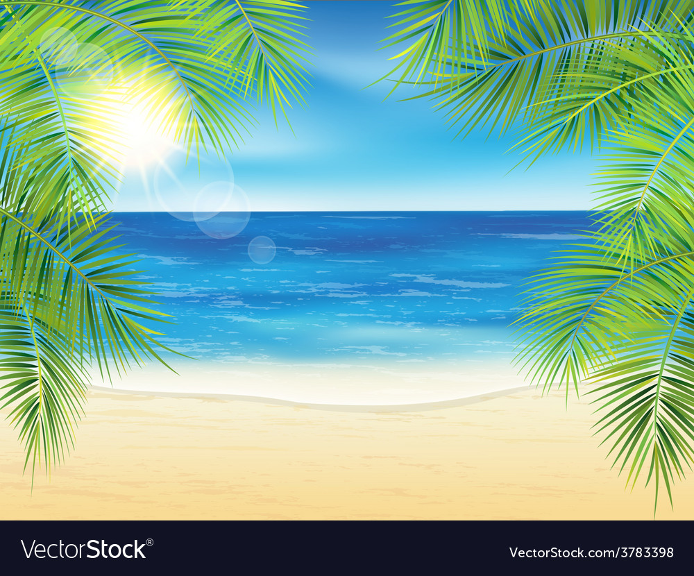 Sand beach and the palm branches at sunset time vector   Price: 3 Credit (USD $3)