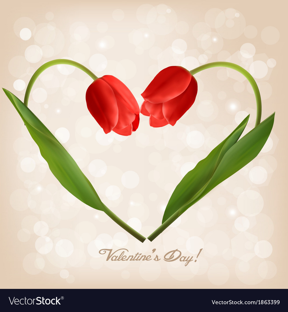 Valentines day background with two flowers vector | Price: 1 Credit (USD $1)