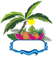 Fresh fruits on the beach vector