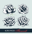 Set of grungy roses vector