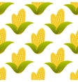 Seamless pattern of fresh corns vector