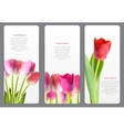 Beautiful floral cards with realistic tulip vector