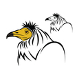 Egyptian vulture vector