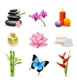 Realistic spa icons vector