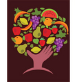 Food and vegetables vector