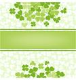 Flower background with clover shamrocks vector
