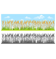 Landscape with wheat vector