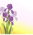 Flowers iris vector