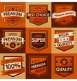 Set of retro vintage badges and labels flat style vector