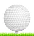 Golf ball in grass vector