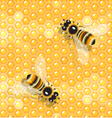 Honey bees vector
