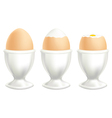 Brown soft boiled egg in a dish on white backgroun vector