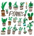 Plants in a pots vector