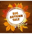 Background of big autumn sale with red leaves vector
