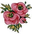Three roses vector