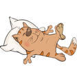 Cat and a pillow vector