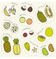 Set of hand drawn tropical fruits part 1 vector