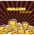 Cheese organic food concept vector