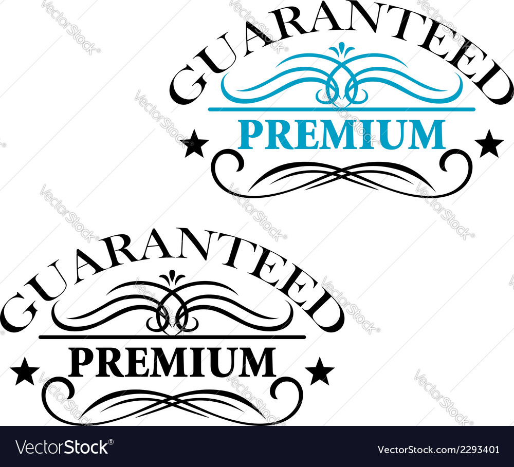 Guaranteed premium calligraphic elements vector | Price: 1 Credit (USD $1)