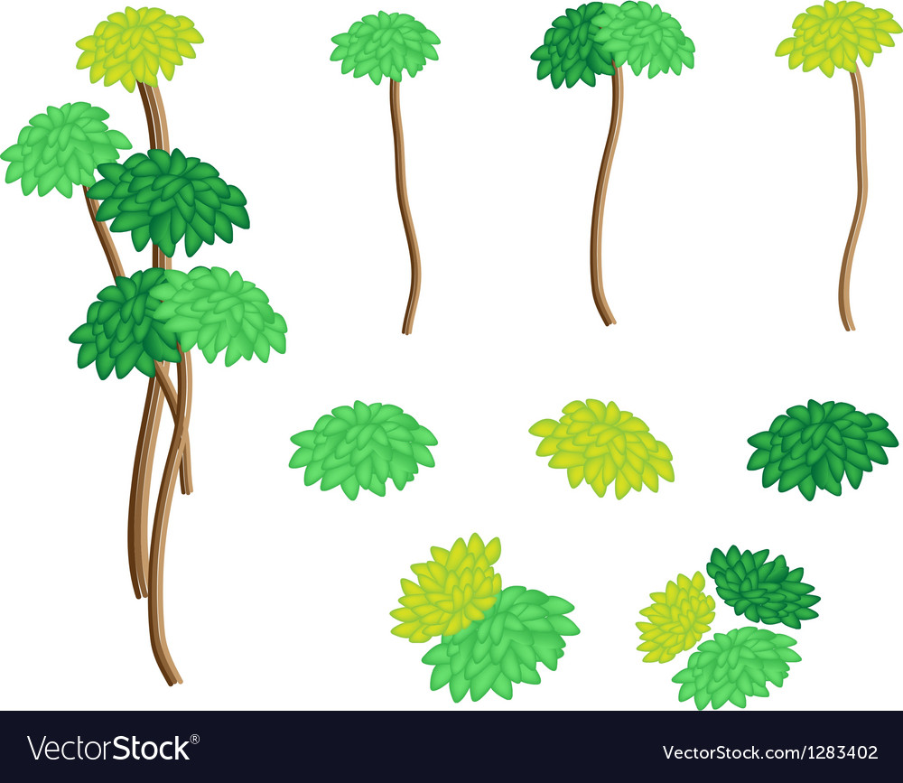 A set of isometric yucca tree and dracaena plant vector | Price: 1 Credit (USD $1)