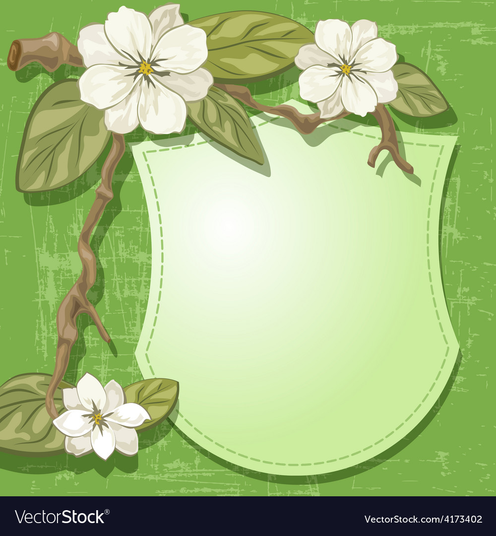 Magnolia and sign vector | Price: 1 Credit (USD $1)