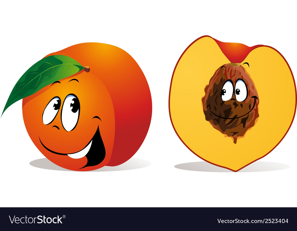 Peach cartoon vector | Price: 1 Credit (USD $1)