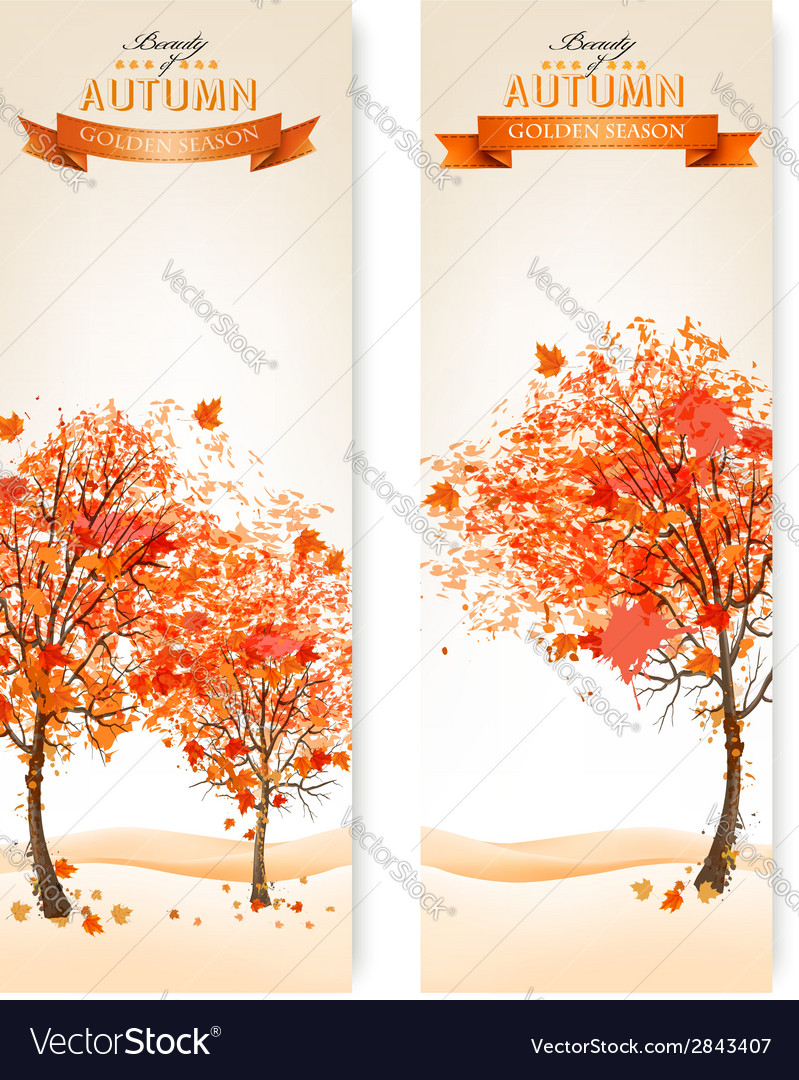 Two abstract autumn backgrounds vector | Price: 1 Credit (USD $1)