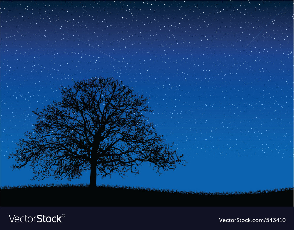 Black silhouette of old tree at night scene vector | Price: 1 Credit (USD $1)