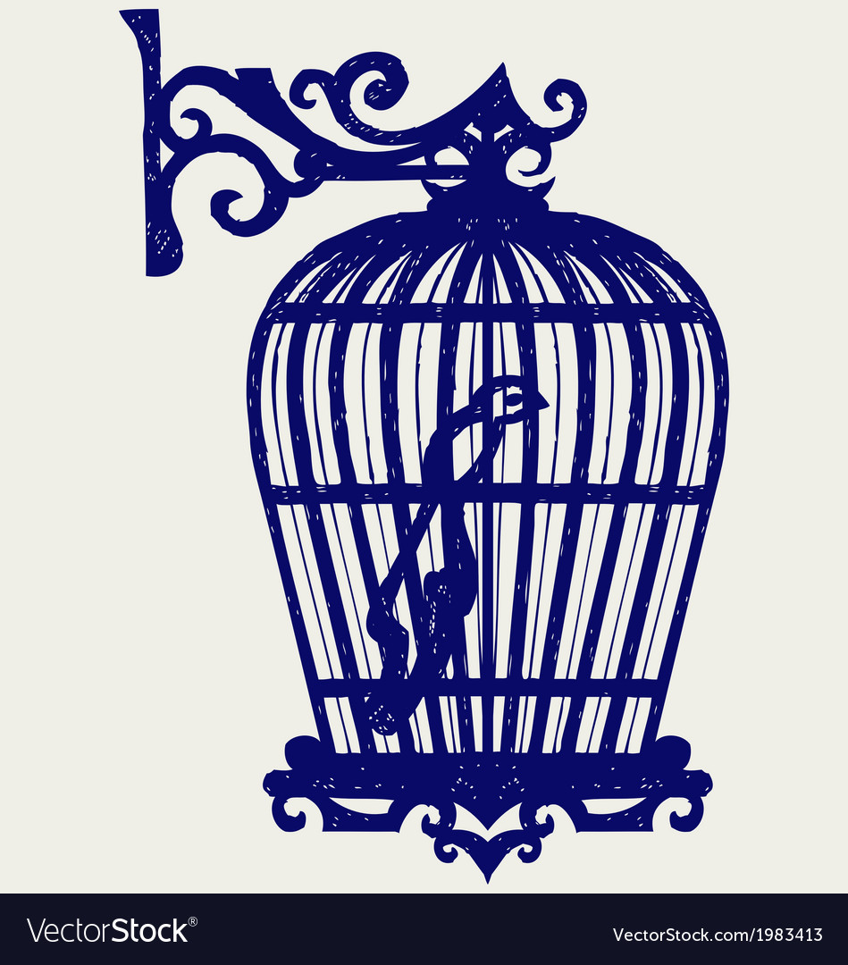 Vintage bird cages vector