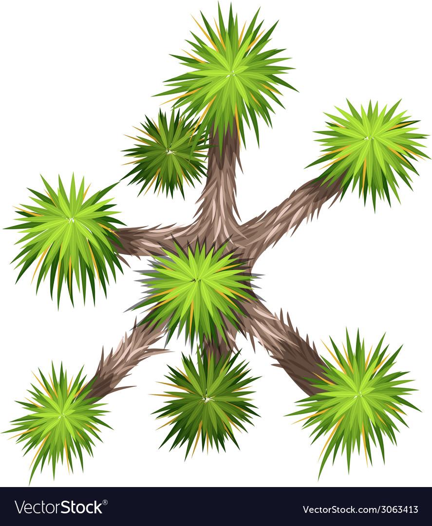 Yucca brevifolia vector | Price: 1 Credit (USD $1)