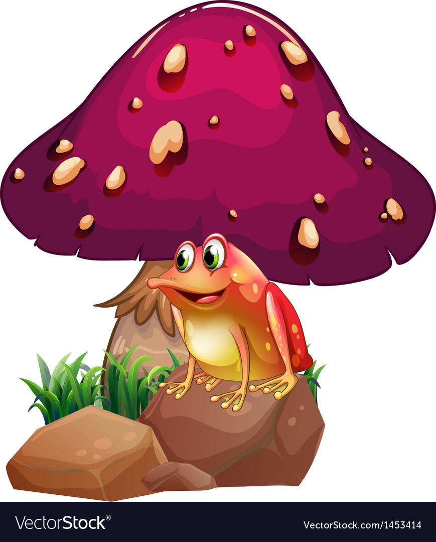 A frog below the giant mushroom vector | Price: 1 Credit (USD $1)