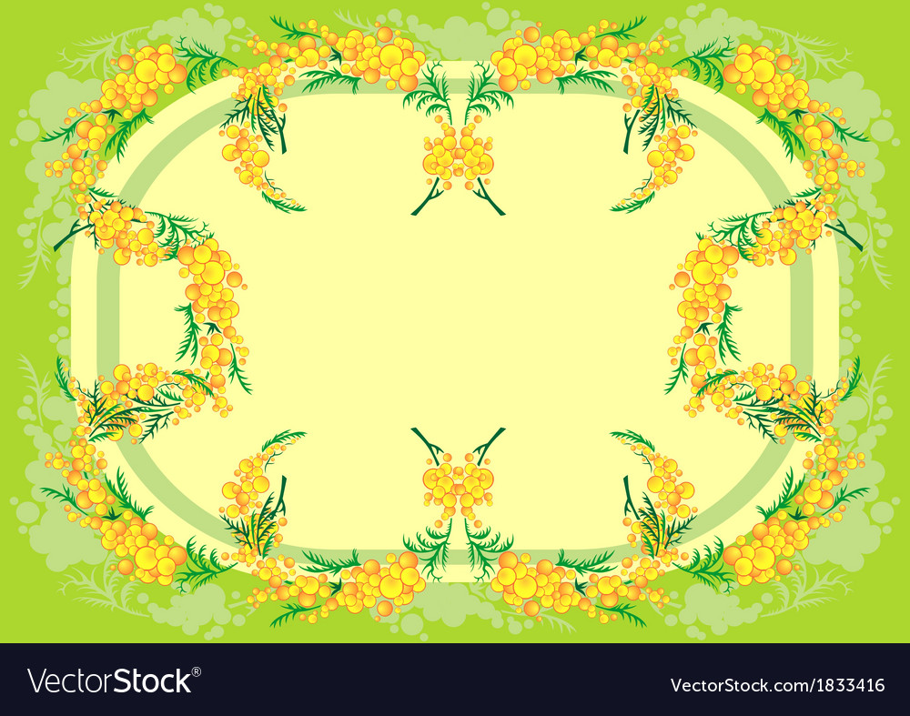 Abstract mimosa frame vector | Price: 1 Credit (USD $1)