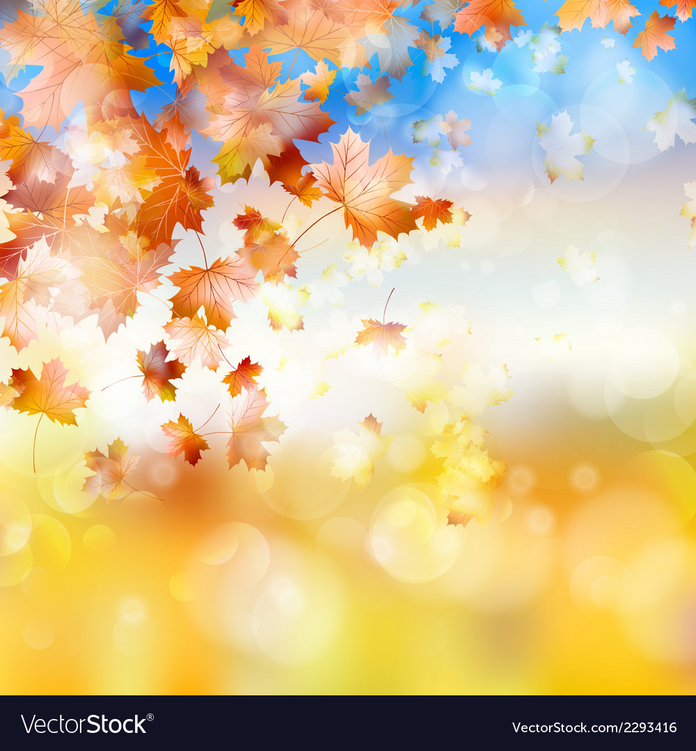 Autumn background with maple leaves eps 10 vector | Price: 1 Credit (USD $1)