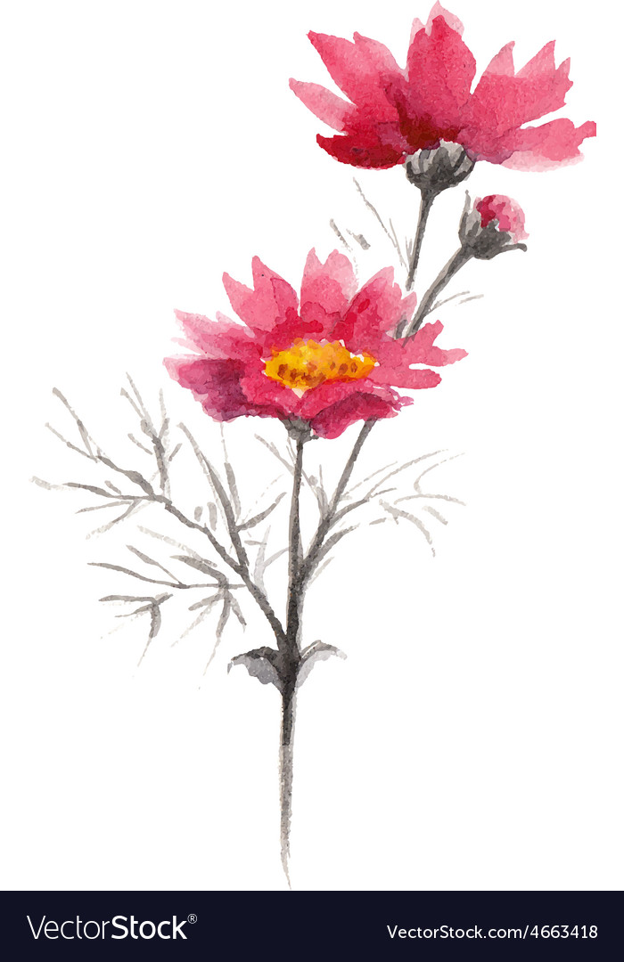 Watercolor pink summer flowers vector | Price: 1 Credit (USD $1)