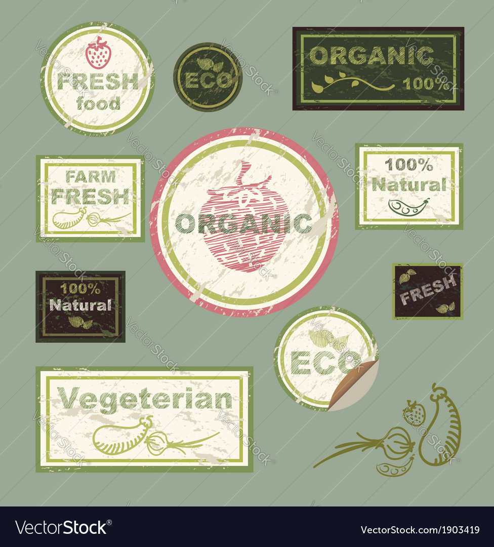Organic food signs vector | Price: 1 Credit (USD $1)